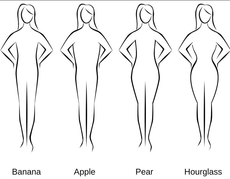 woman body type